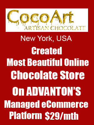 ecommerce website new york